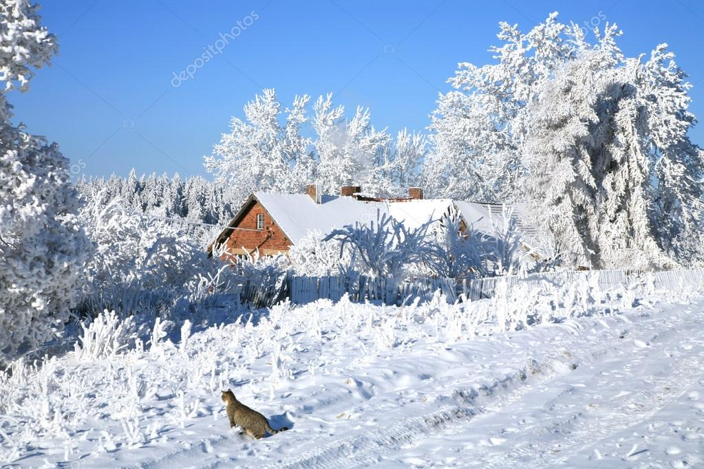 Country old house in snow