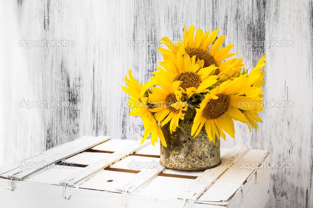 Background Still Life Flower Sunflower Wooden White Vintage Stock Photo