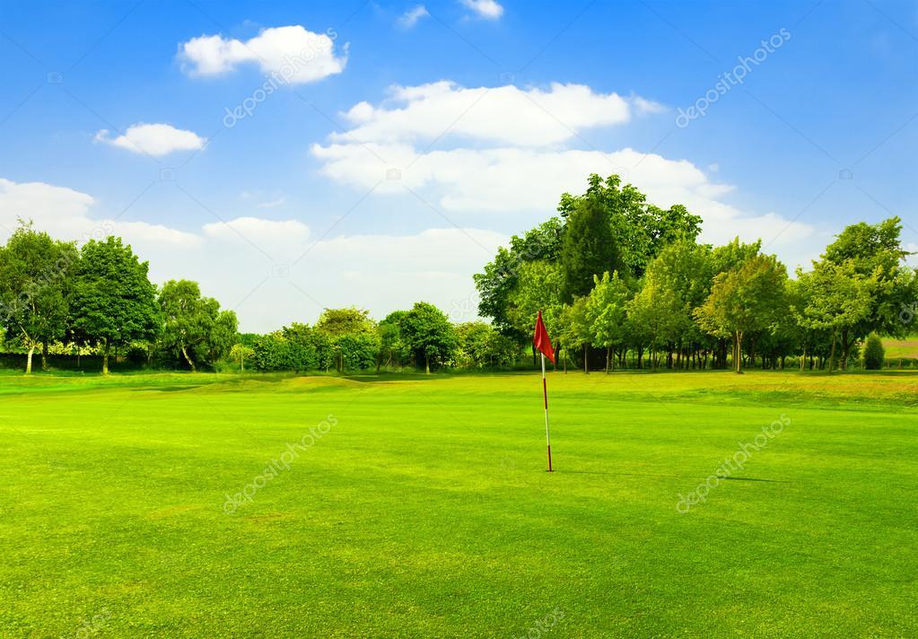 Perfect Green grass on a golf field