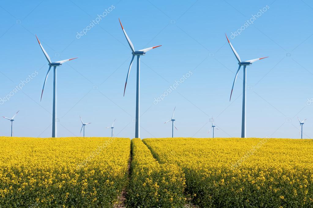 Wind Turbines - alternative energy