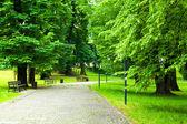 Park na jaře