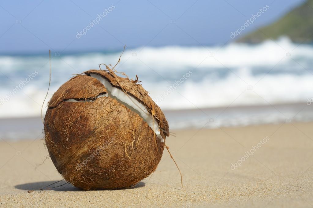 flagras na praia grelos grandes
