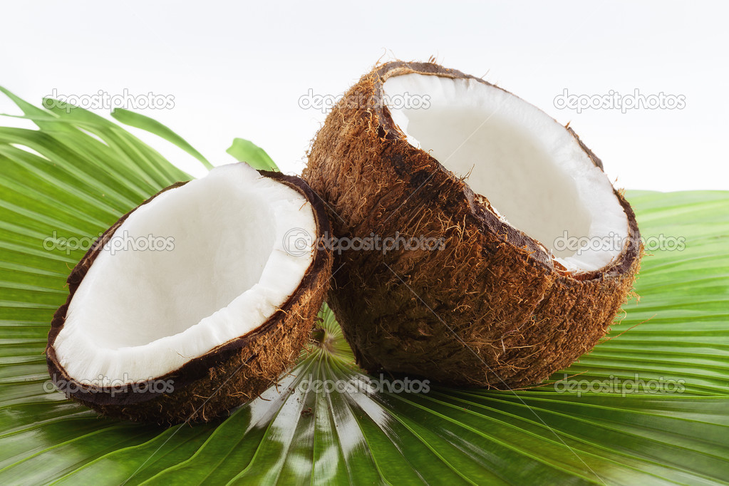 Close up view of nice fresh coconut on green back