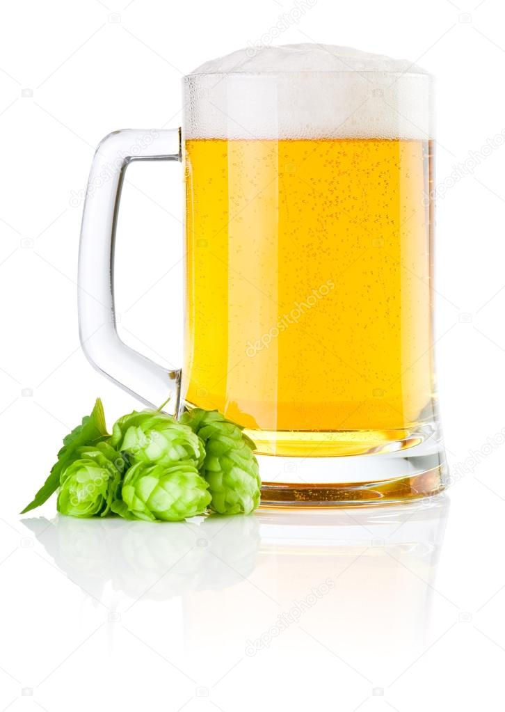 Mug fresh beer with Green hops isolated on a white background