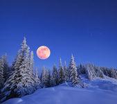 Fotografie Vollmond im winter
