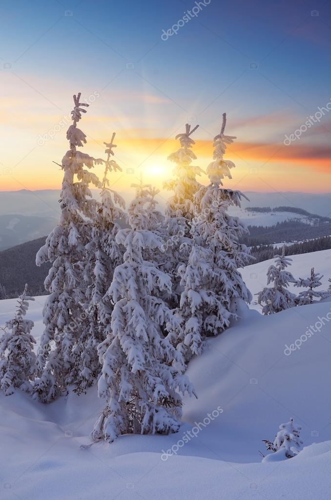 Beautiful sunset in winter