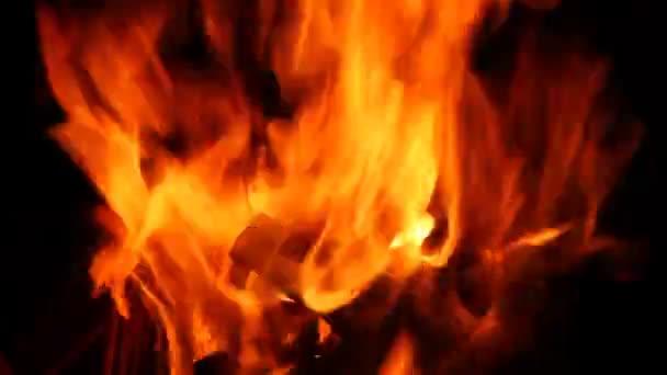 tűz lángja