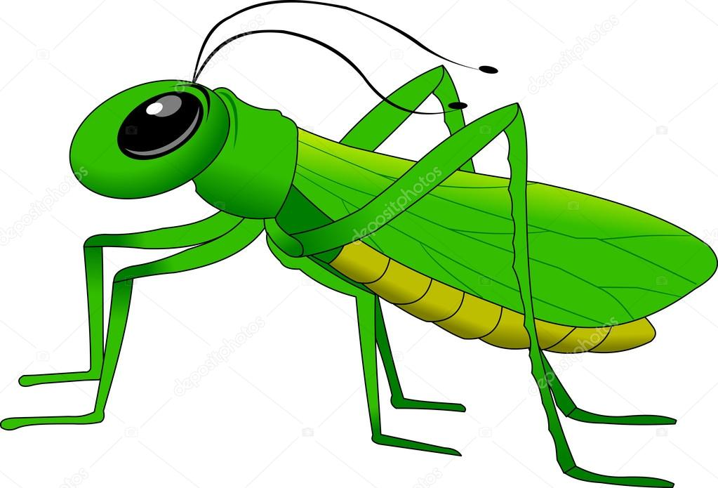 Grasshopper Stock Vectors, Royalty Free Grasshopper Illustrations ...