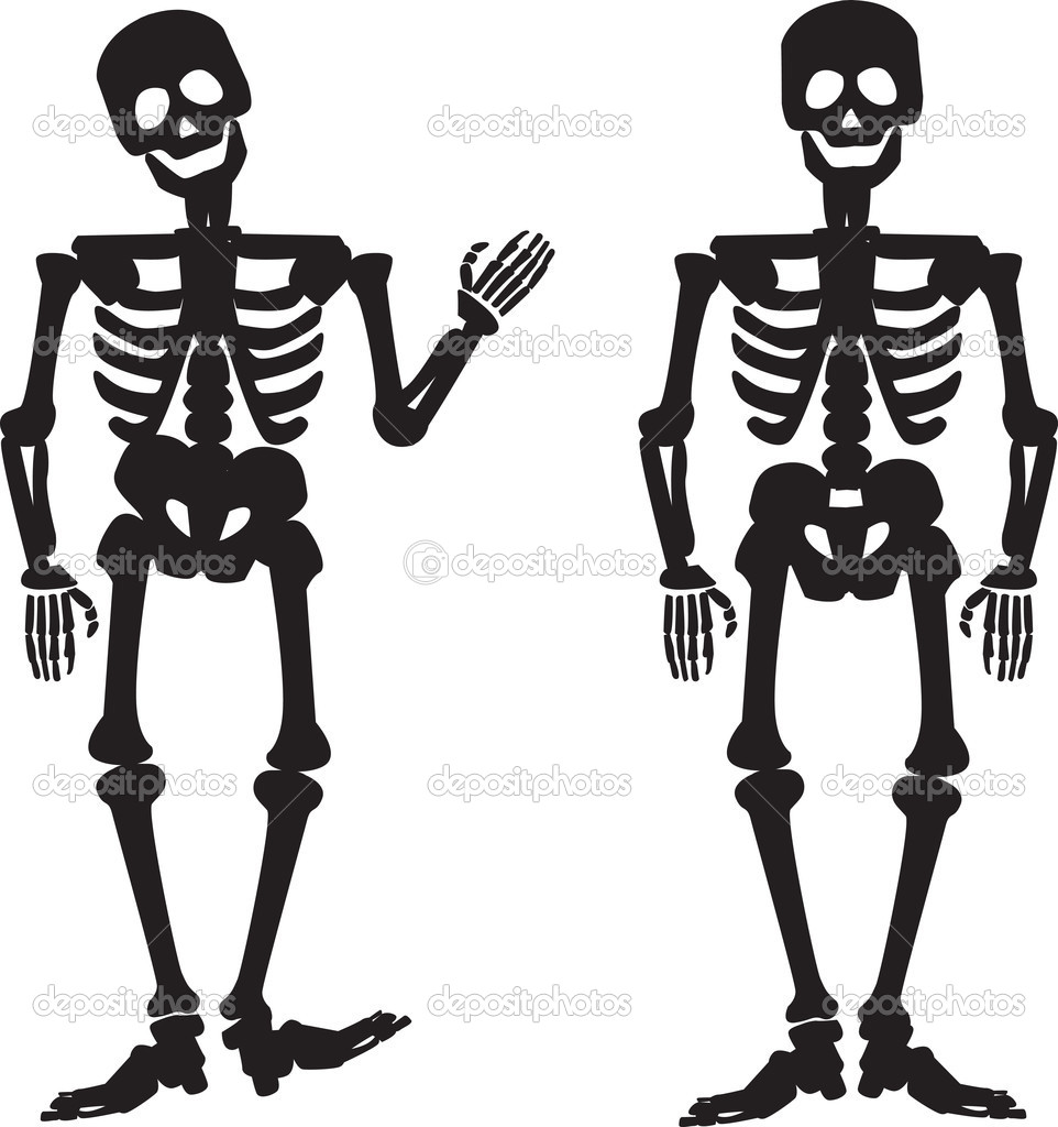Illustration of the silhouette of a human skeleton — Stock Photo ...