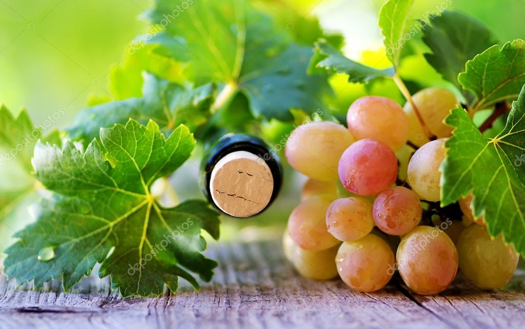 Cork bottle wine and grapes