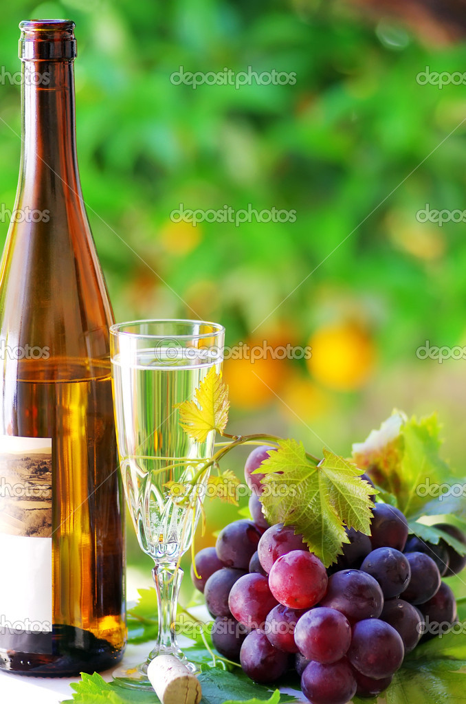 Glass and bottle of alvarinho wine