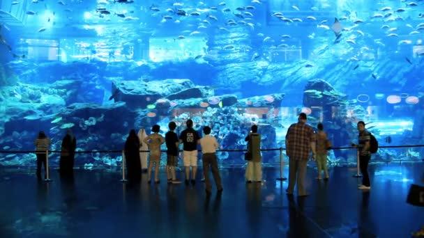 Oceanarium and underwater zoo inside of the Dubai Mall United Arab Emirates
