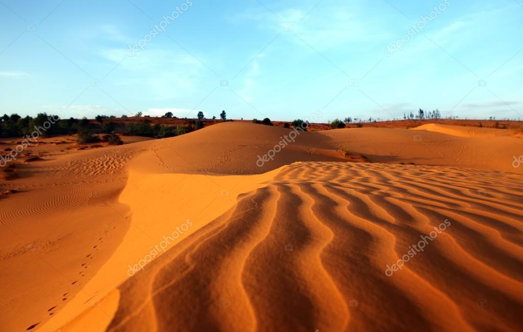 Red Sand Dunes. Sunset