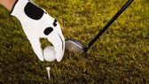 Golfový míč na tee