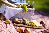 Fotografie piknikový koš s ovocem chléb a víno
