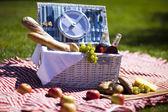 Fotografie piknik na trávě