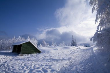 Wooden house on winter landscape