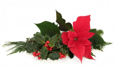 Poinsettia Flower Decoration