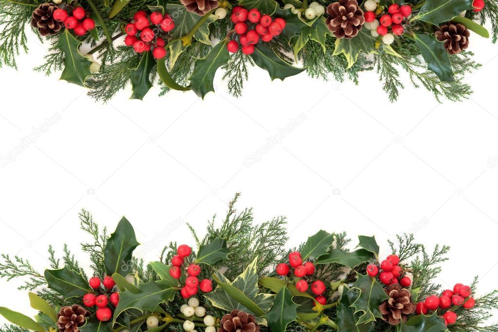 Christmas holly border — stock photo marilyna