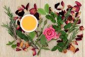 szerelmi bájitalt gyógynövények