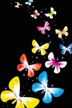 butterflies black backdrop