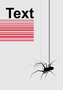 spider on grey background vector
