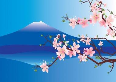 vector sakura or cherry blossoming tree