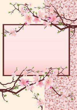 Pink japan cherry blossom