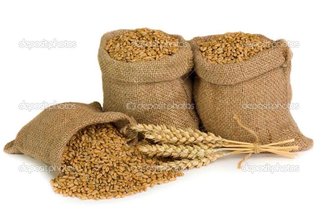 wheat sacks - 800×533