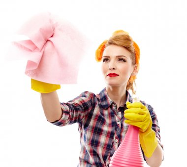 Studio shot of attractive housewife holding a piece of cloth and a spray, isolated over white background stock vector