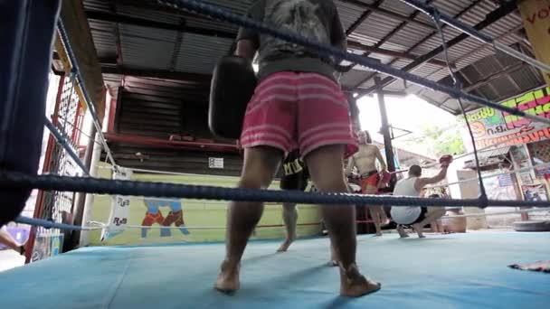 Kickboxer trains
