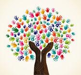 barevné solidarita strom