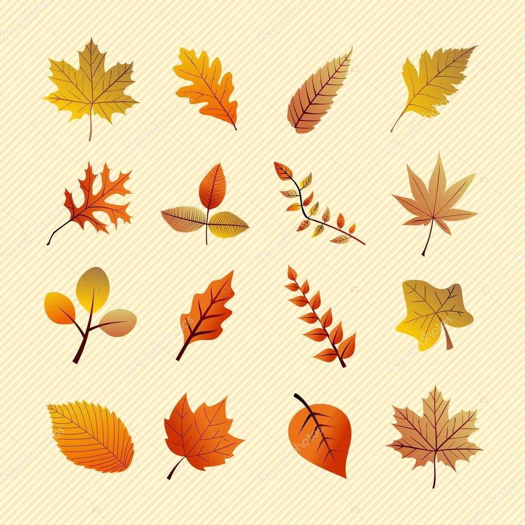 Vintage autumn season tree leaves set. EPS10 file.
