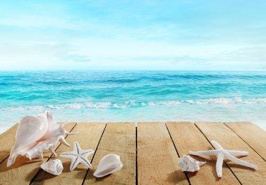 Boardwalk with shells