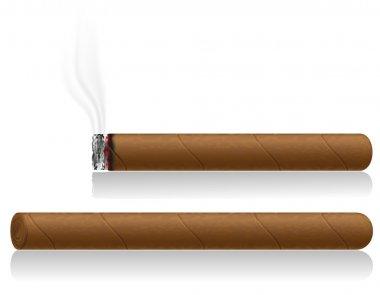 cigars vector illustration