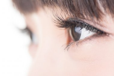 Beautiful woman eyes with long eyelashes