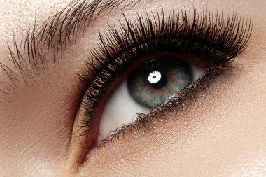 Woman beautiful eye with naturally long eyelashes. Macro shot. Wellness and spa, health and cosmetics. Natural make-up with black mascara on lashes. Long naturel eyelashes