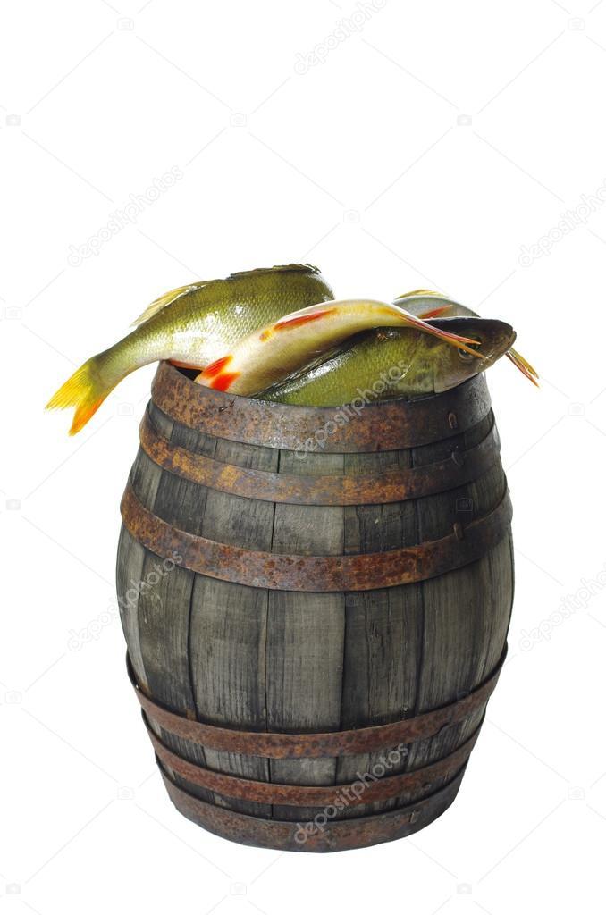 Картинка бочка с рыбой