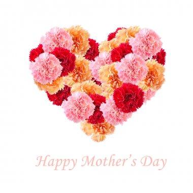 Carnation flowers In Love Shape