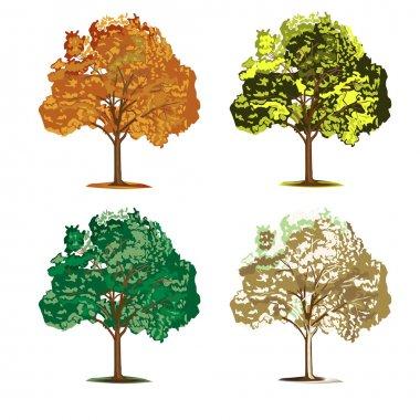Set of four seasonal trees