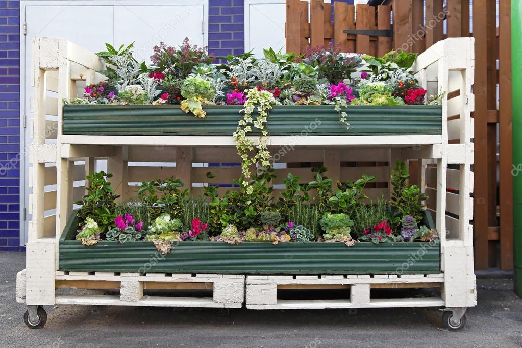 Kwiaty Palet Zdjęcie Stockowe Baloncici 15637143