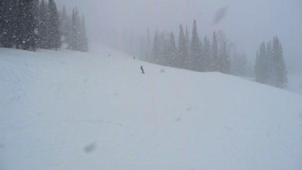 strávník dívka ve sněhu