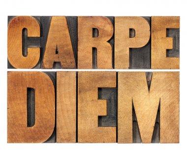 Carpe Diem in wood type