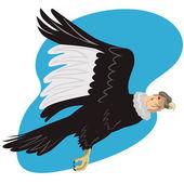 Fotografia Condor in volo