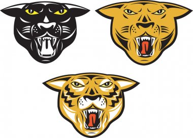 Panther Big Cat Growl Head Isolated