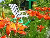 Fotografie skládací židle na pozadí lilie