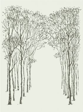 Vector background. Arc frame of trees