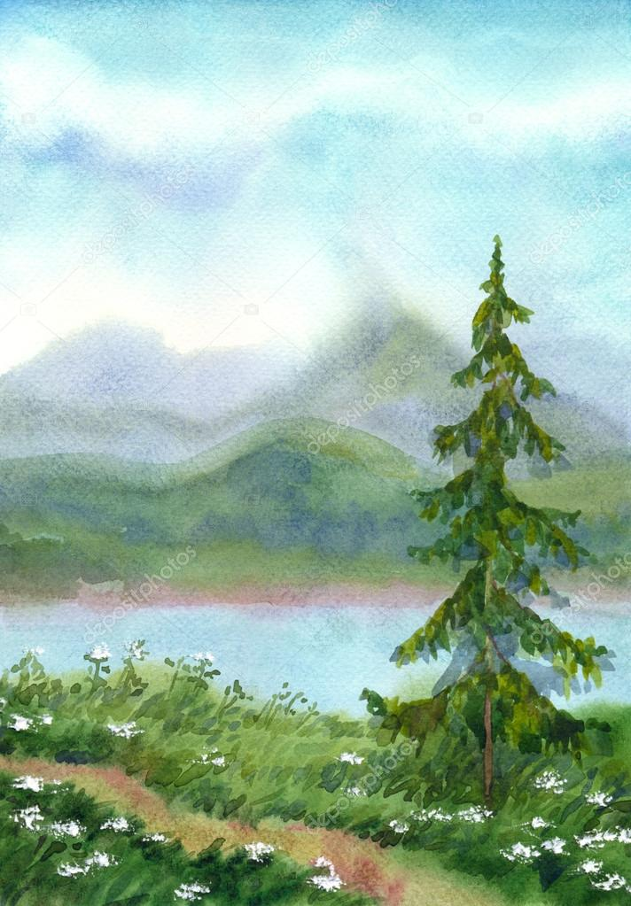Watercolor landscape. Spruce near the trail on a hill