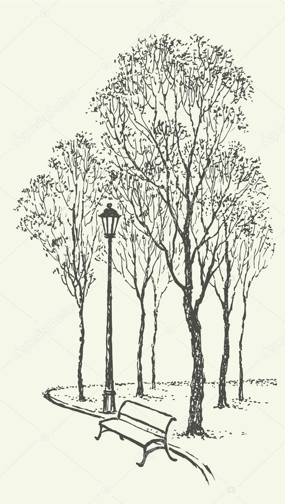 Vector landscape. Park bench near the lantern under trees