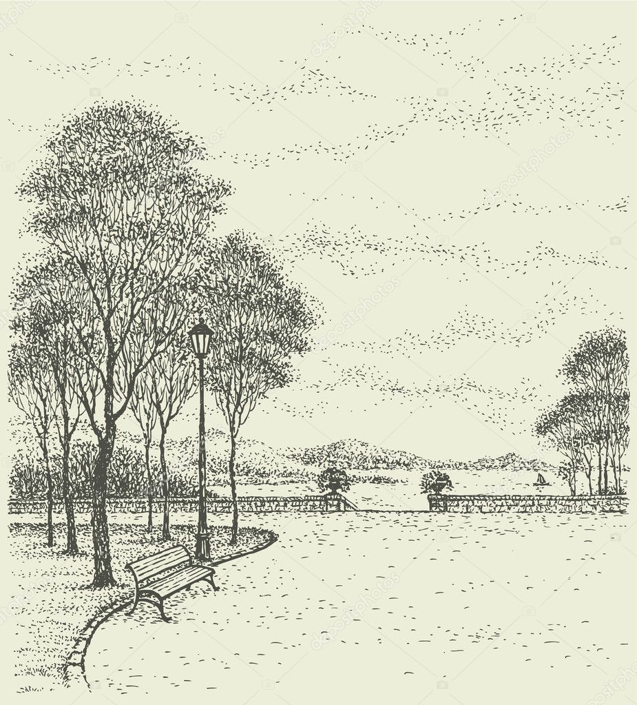 Vector landscape. Bench near the lantern under the tall trees of